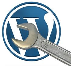 WordPress Advance Class