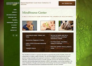 Mindsource-Center-website-by-Go-To-Graphics-Gal