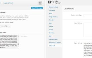WordPress theme-option-backups