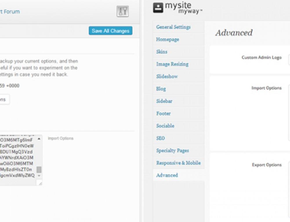 WordPress Theme Options Backups