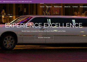 NW-Premier-Transportation website by Go To Graphics Gal